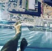 Binanın üstündə qurulan qorxulu hovuz – VİDEO