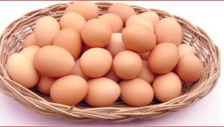 Bakı marketlərində yumurta qadağası