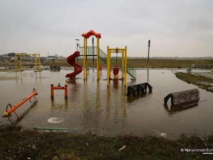 Ramanada 2 il öncə salınan parkda indi mal-qara otarılır - FOTOLAR, VİDEO